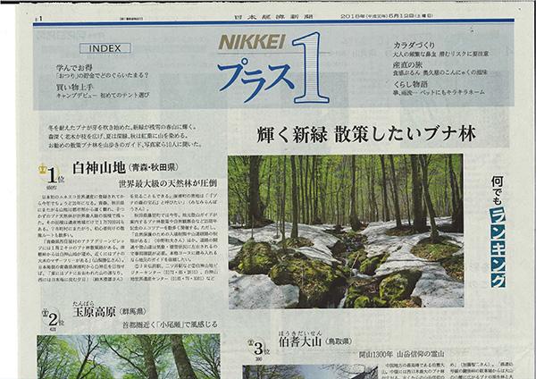 f:id:shikanai:20180512093129j:image