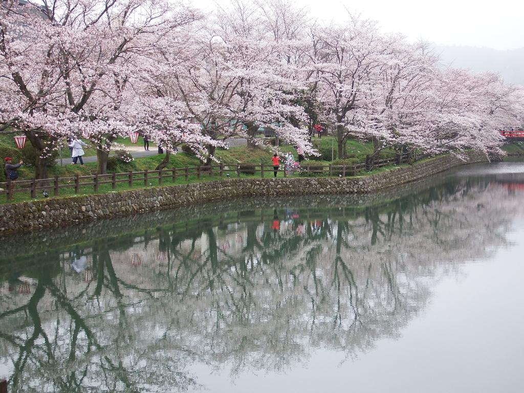 f:id:shikano-ongaku:20190305103215j:plain