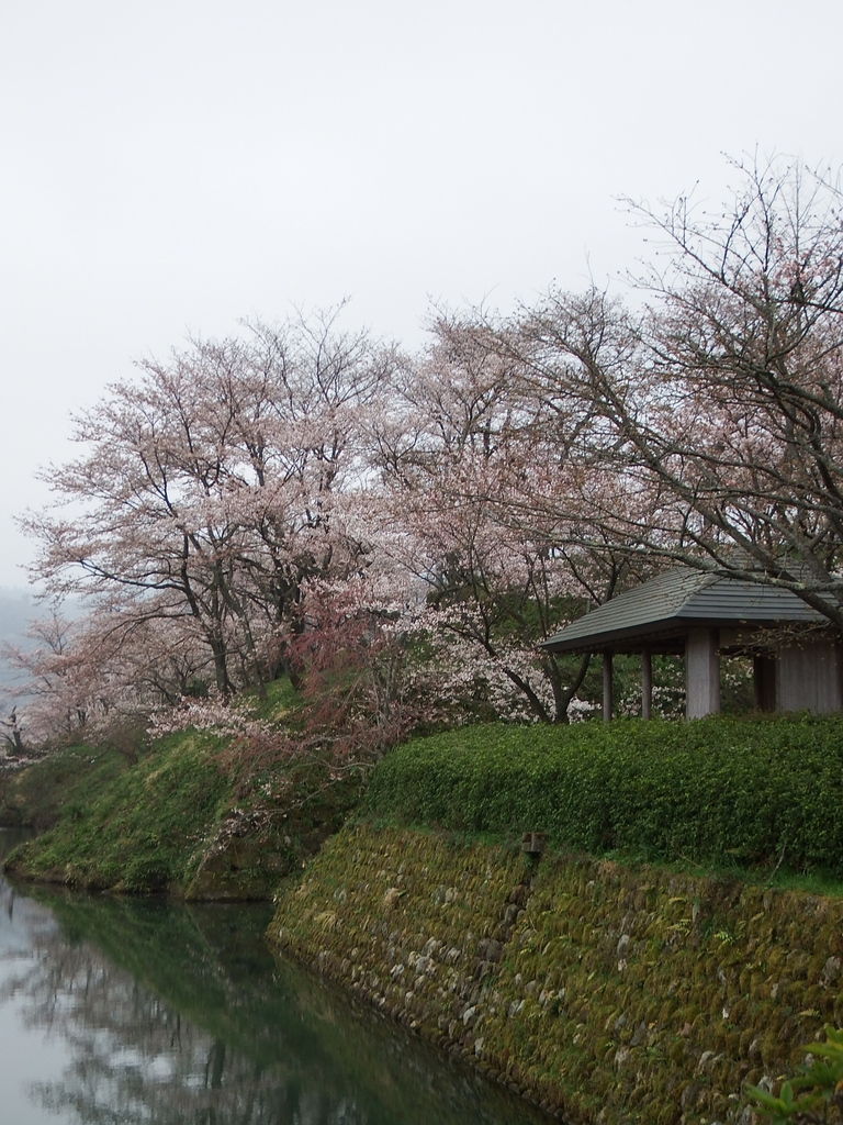 f:id:shikano-ongaku:20190305103531j:plain
