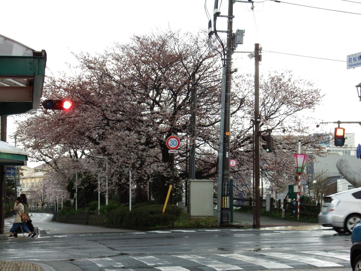 f:id:shikano-ongaku:20190403163651j:plain