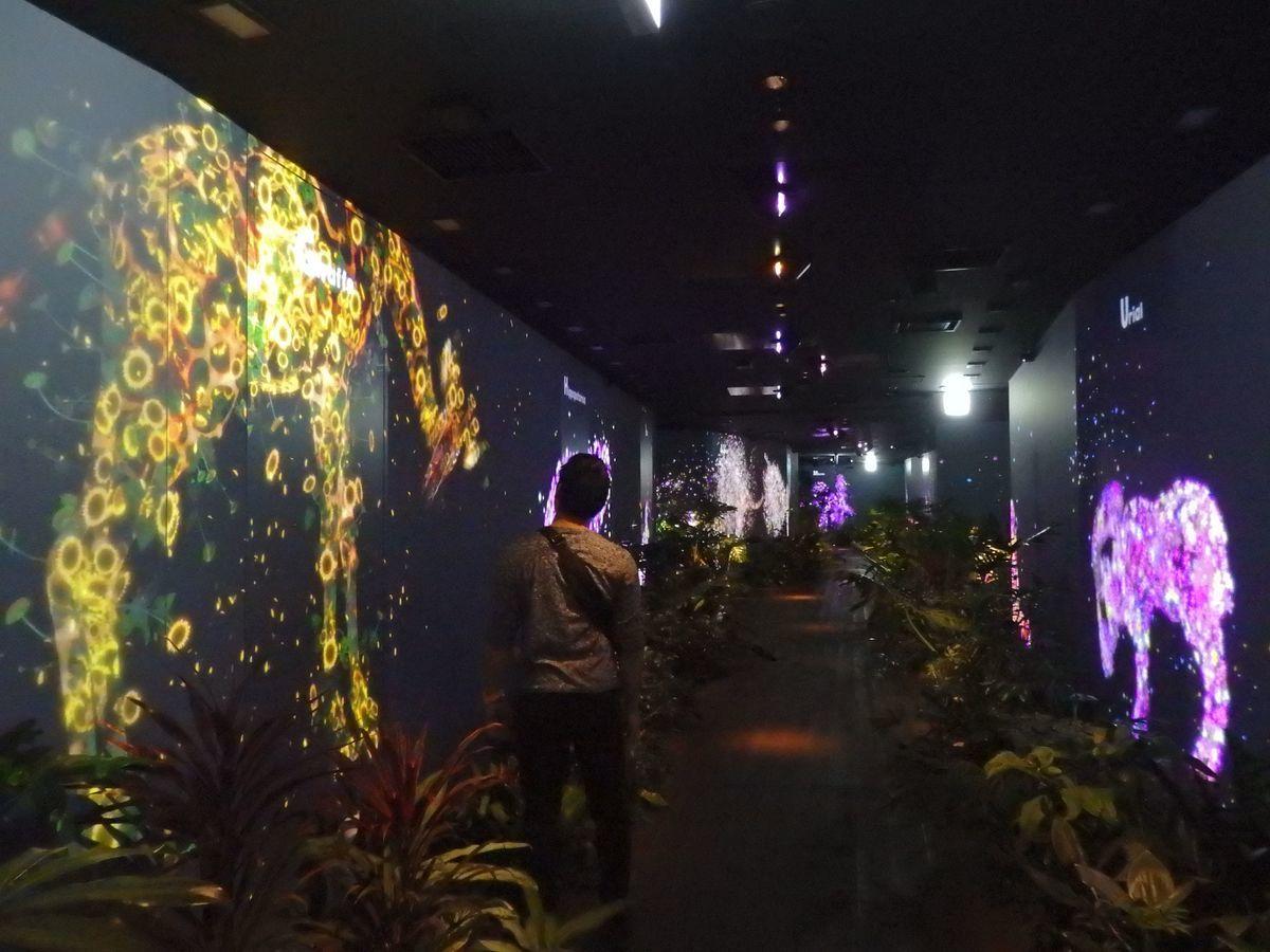 住友不動産六本木グランドタワービル24階 DMM本社のイベント会場
