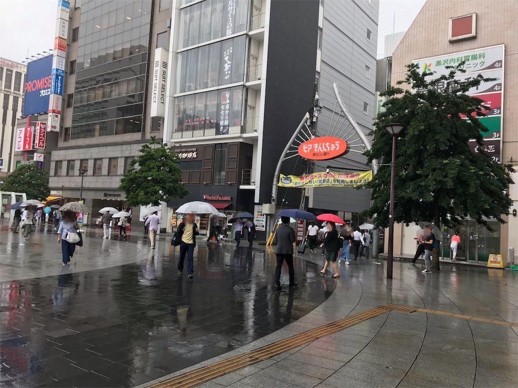 f:id:shikazemiu:20190713100124j:image