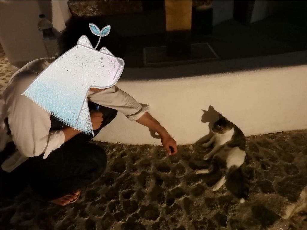 ギリシャ新婚旅行で宿泊したサントリーニ島イアのおすすめ洞窟ホテル「ラ ペルラ ヴィラズ アンド スイーツLa Perla Villas and Suites」猫