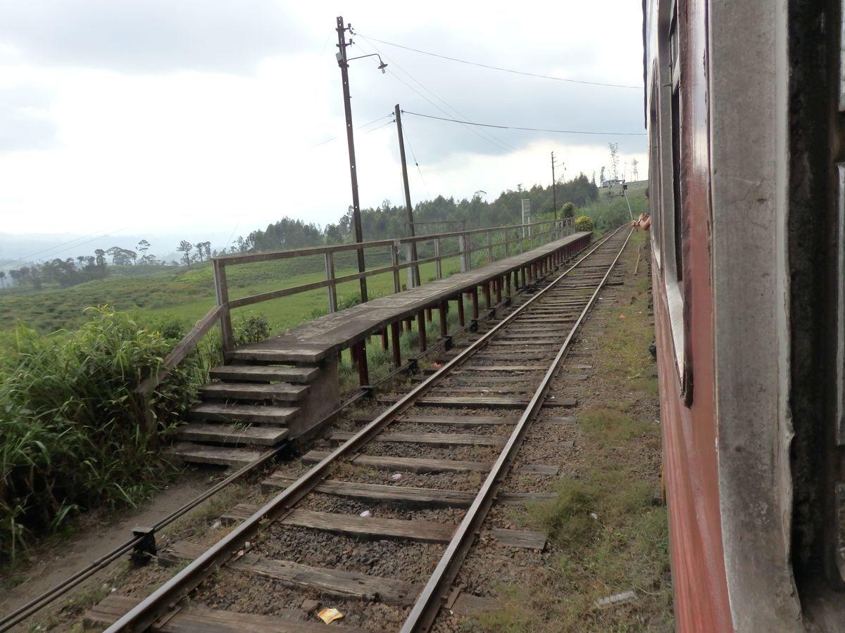 スリランカ キャンディとヌワラ・エリヤを結ぶ高原列車/紅茶列車 Great Western(グレート・ウエスタン)駅