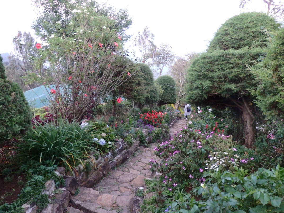 紅茶工場をリノベーションしたホテル,ヘリタンス ティー ファクトリー(Heritance Tea Factory)庭園