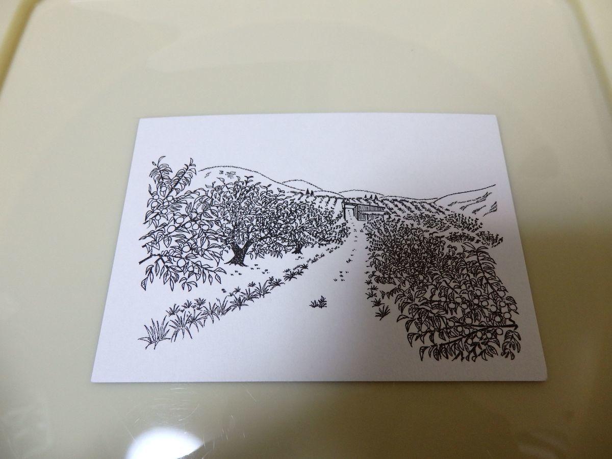 うめぼしの松本農園の名刺(カード)