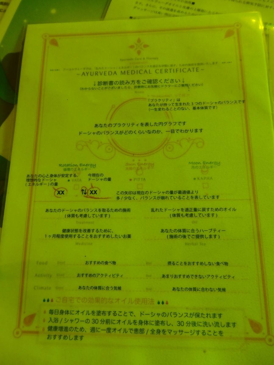 スリランカ・コロンボにある日本人経営の本格アーユルヴェーダ施設「ExSerendib Ayurveda Cure & Therapy」診断書の読み方のシート(日本語)