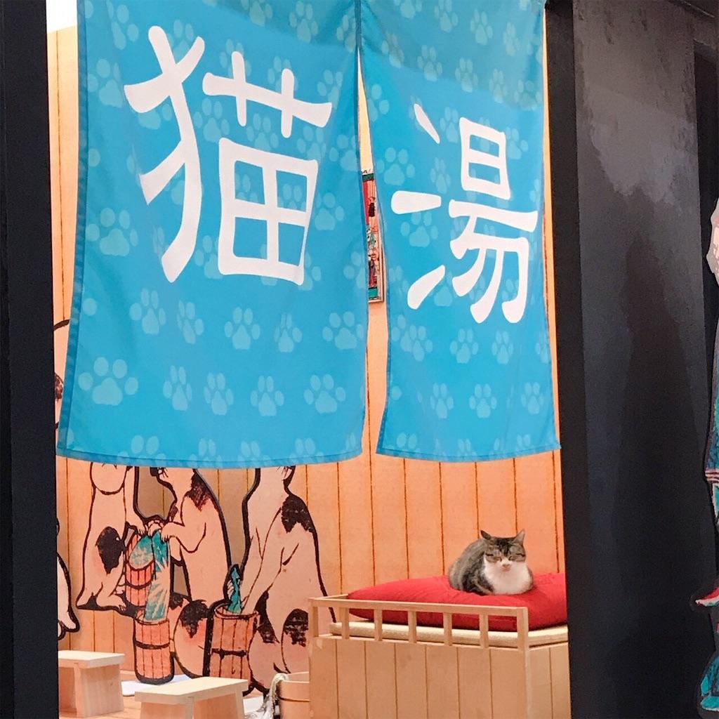 f:id:shiki-japanculture:20181107220058j:image
