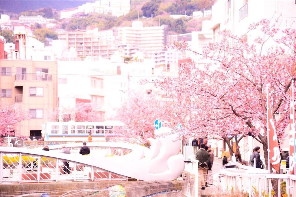 f:id:shiki-japanculture:20190219001647j:image