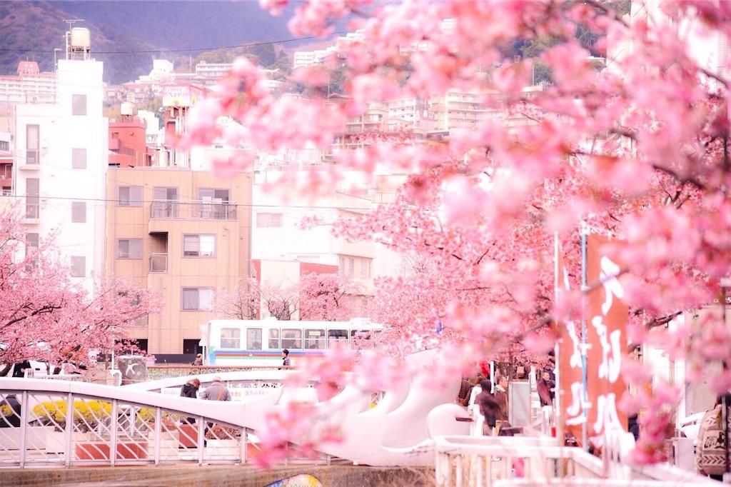 f:id:shiki-japanculture:20190219001903j:image