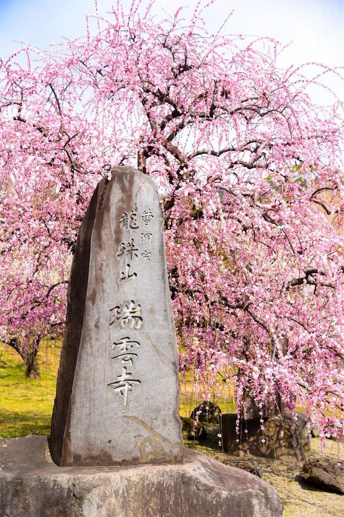 f:id:shiki-japanculture:20190227082106j:image