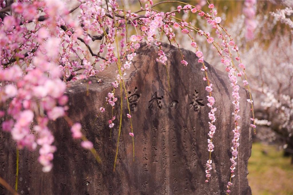 f:id:shiki-japanculture:20190227082134j:image