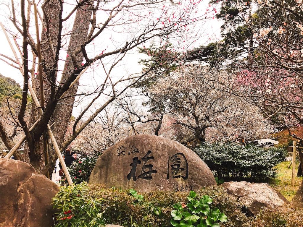 f:id:shiki-japanculture:20190228223412j:image