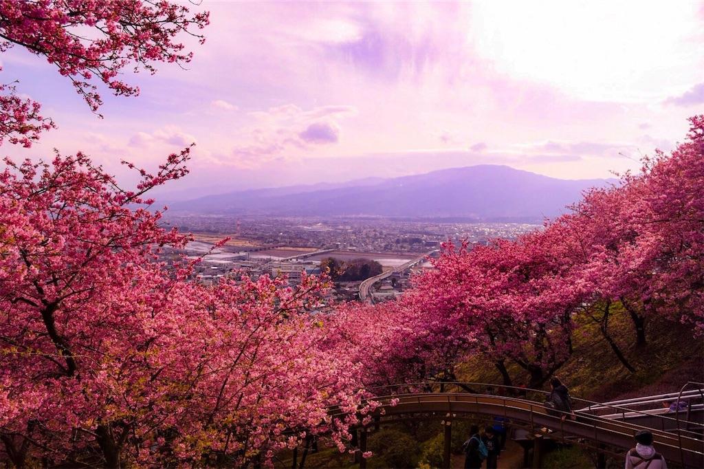 f:id:shiki-japanculture:20190303225202j:image
