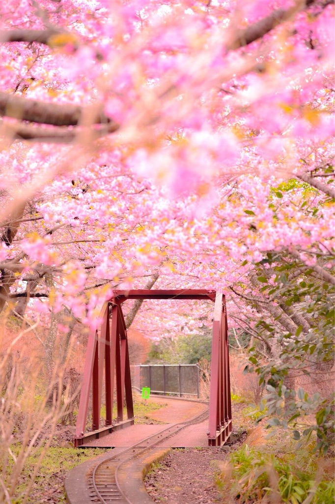 f:id:shiki-japanculture:20190305002751j:image