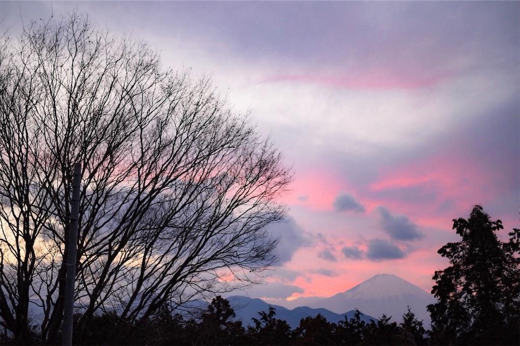 f:id:shiki-japanculture:20190305002931j:image