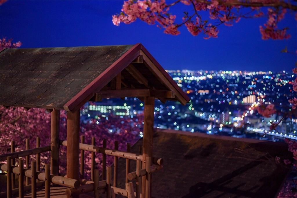 f:id:shiki-japanculture:20190305003015j:image