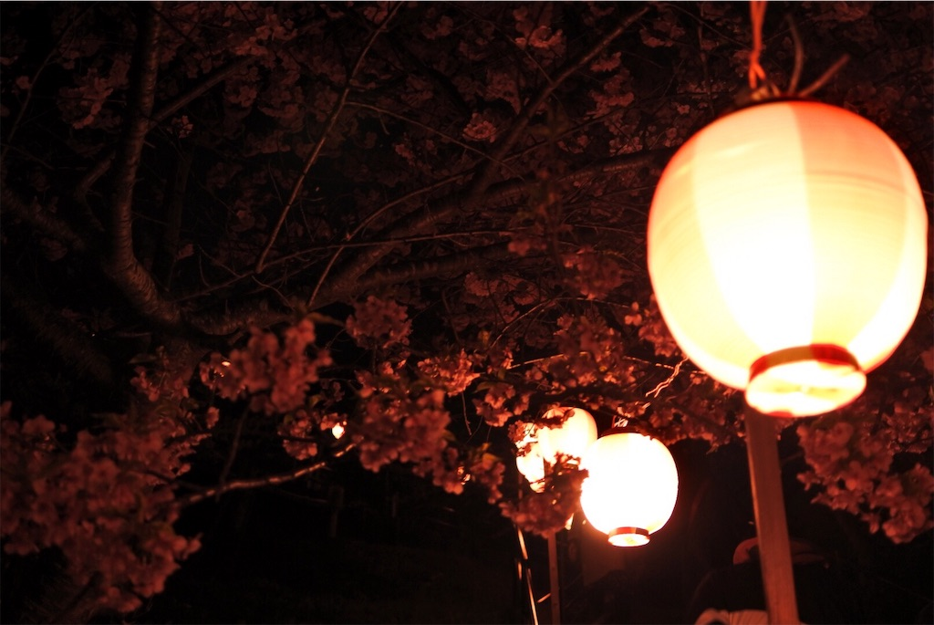 f:id:shiki-japanculture:20190305003112j:image