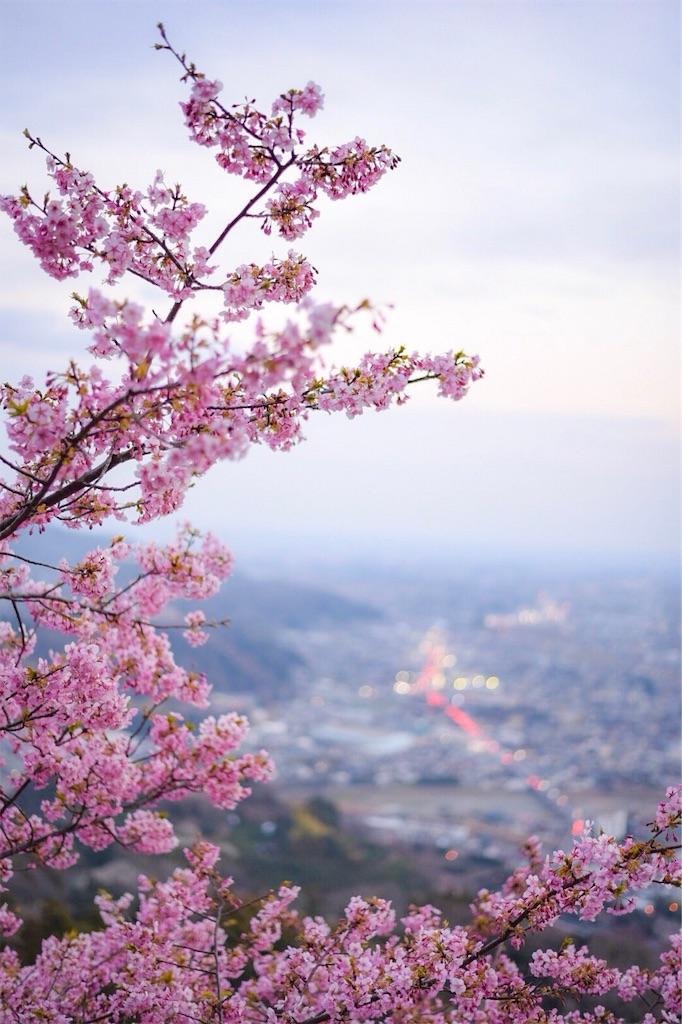 f:id:shiki-japanculture:20190305003448j:image