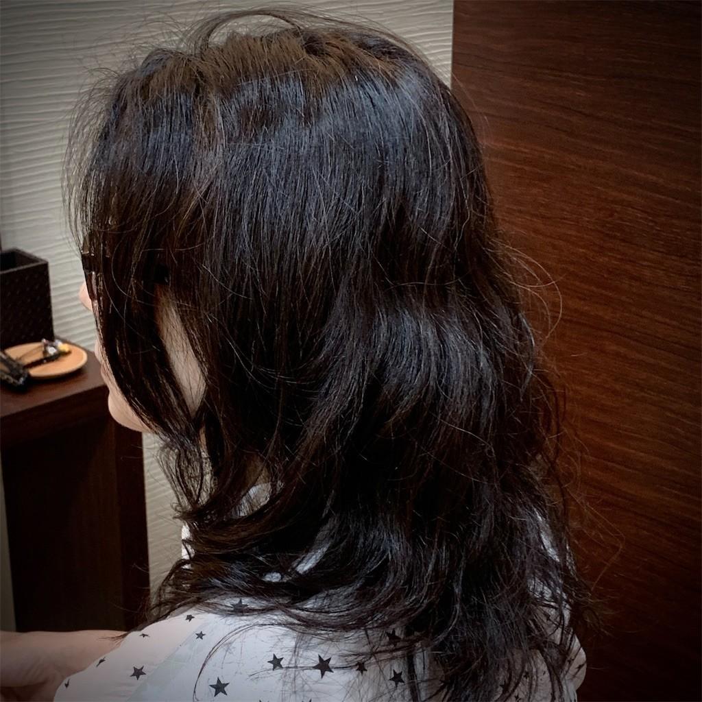 f:id:shikihan:20200726150020j:image
