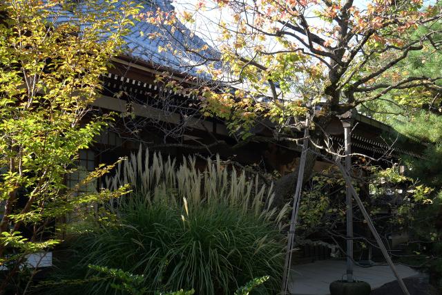 f:id:shikinotabibito:20211014201747j:plain