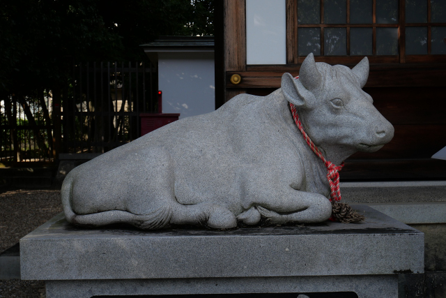 f:id:shikinotabibito:20211016172727j:plain