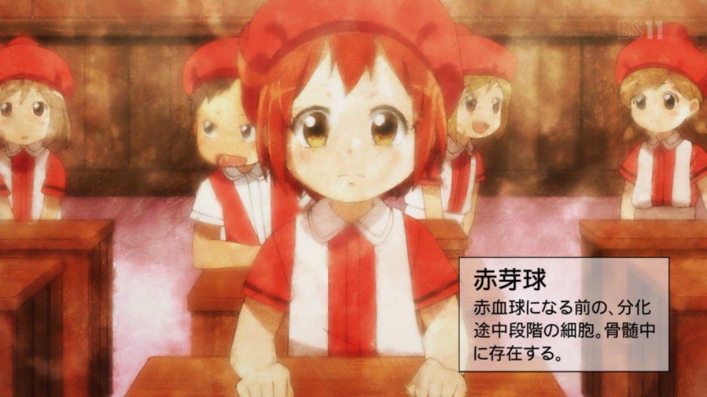 f:id:shikiyu:20180812092247j:plain