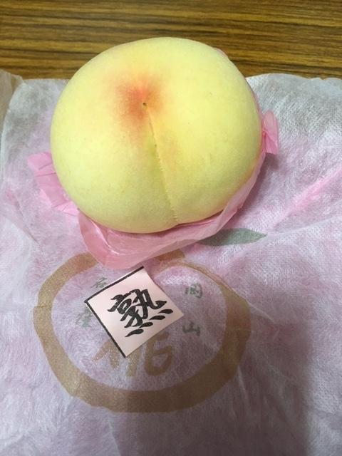 f:id:shikokuiiyo:20170725173943j:plain