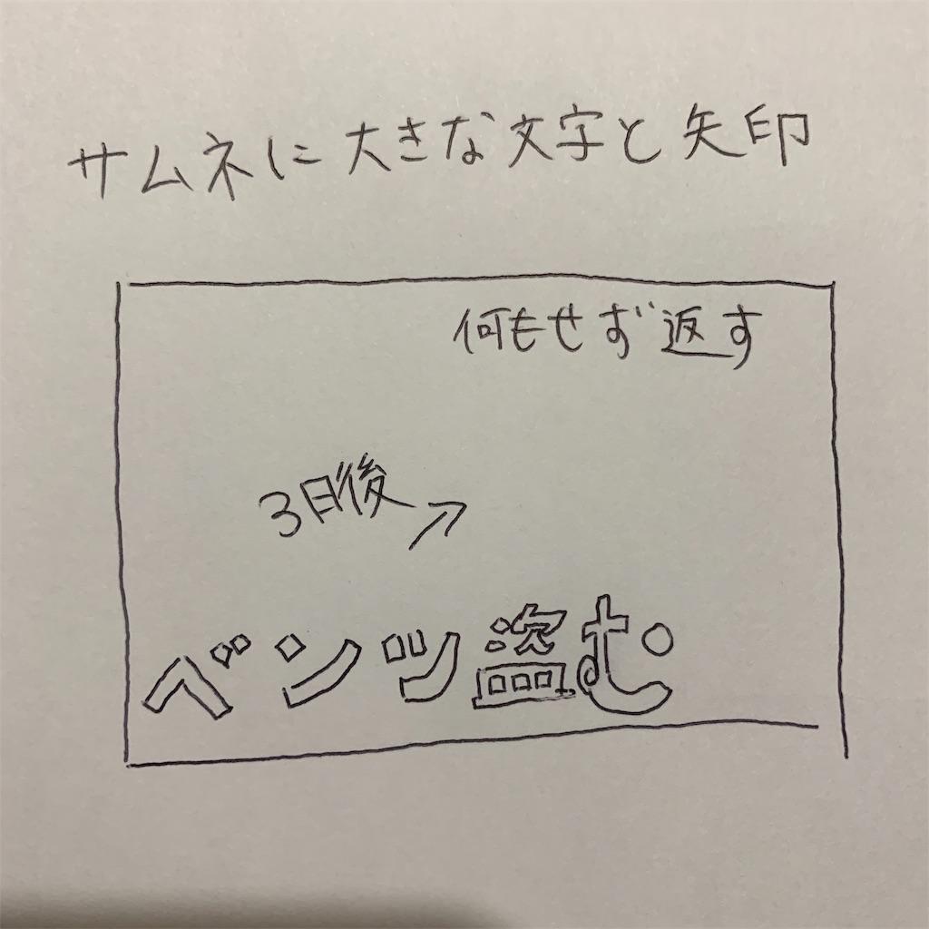 f:id:shikura-blueberry:20190530210435j:image