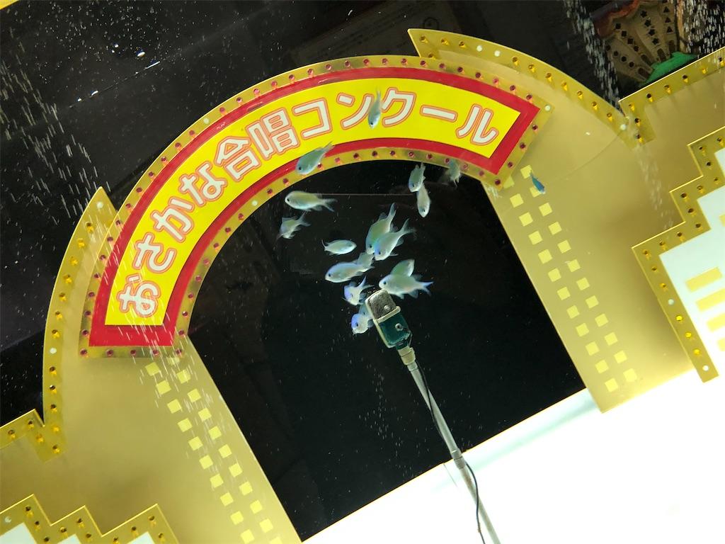 f:id:shima-nju:20200319005310j:image