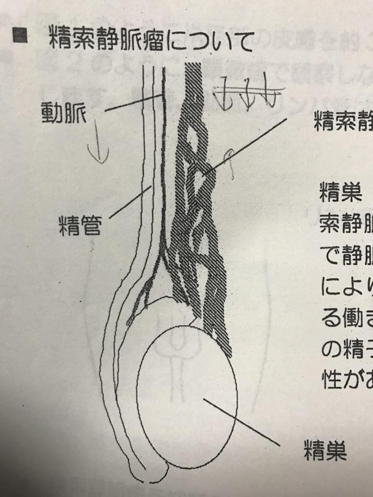 f:id:shima-sh0:20170217221142j:plain