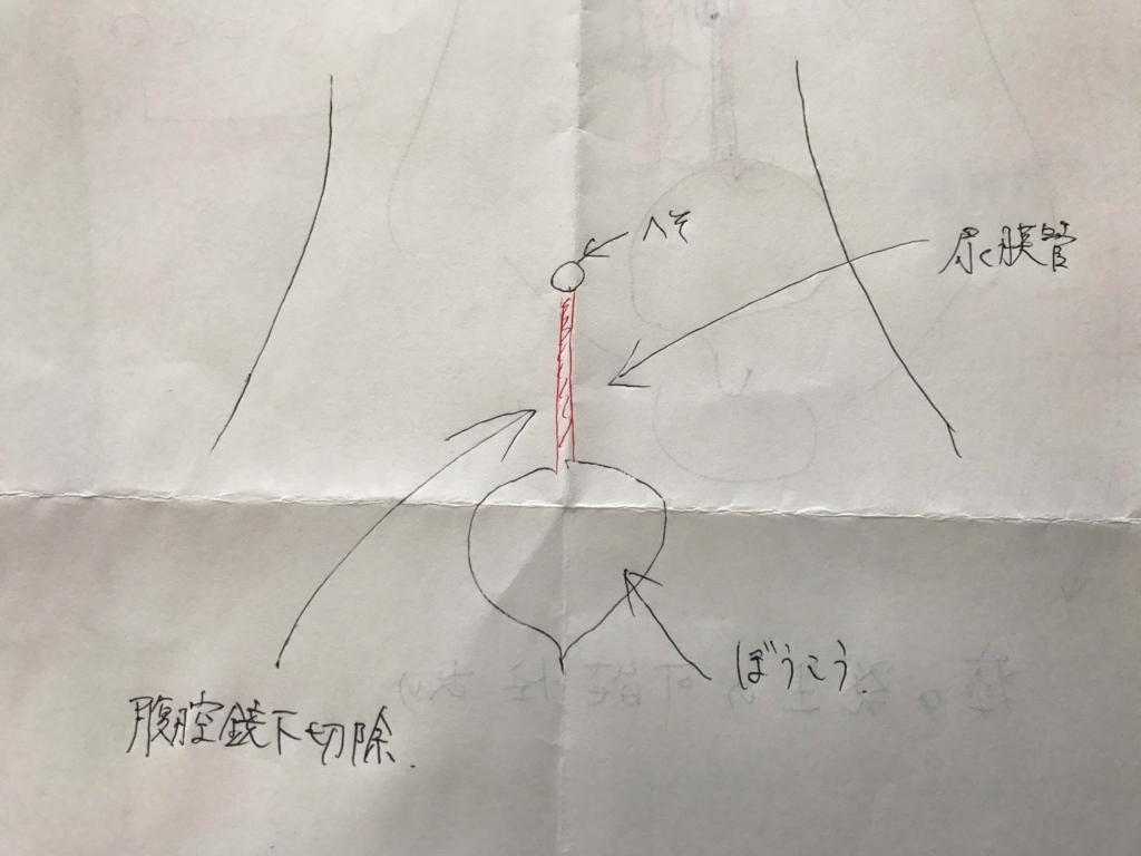 f:id:shima-sh0:20170406074907j:plain
