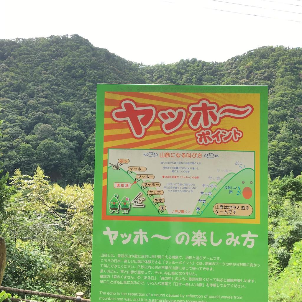 f:id:shima-shimachan:20190813070647j:image