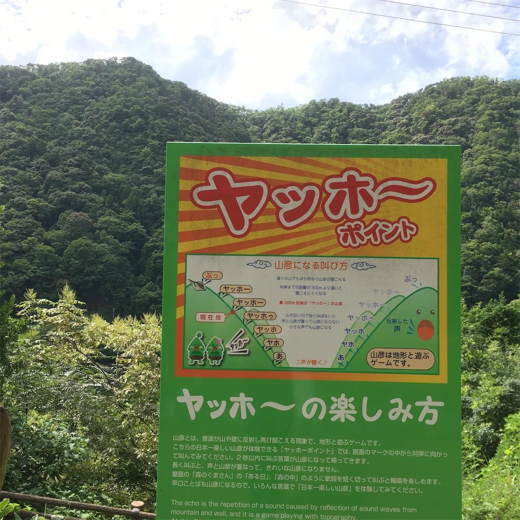 f:id:shima-shimachan:20190814221144j:image
