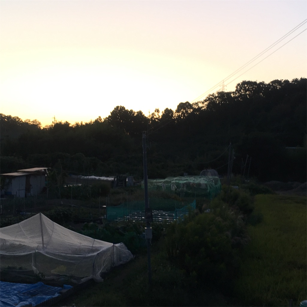 f:id:shima-shimachan:20191022202836j:image