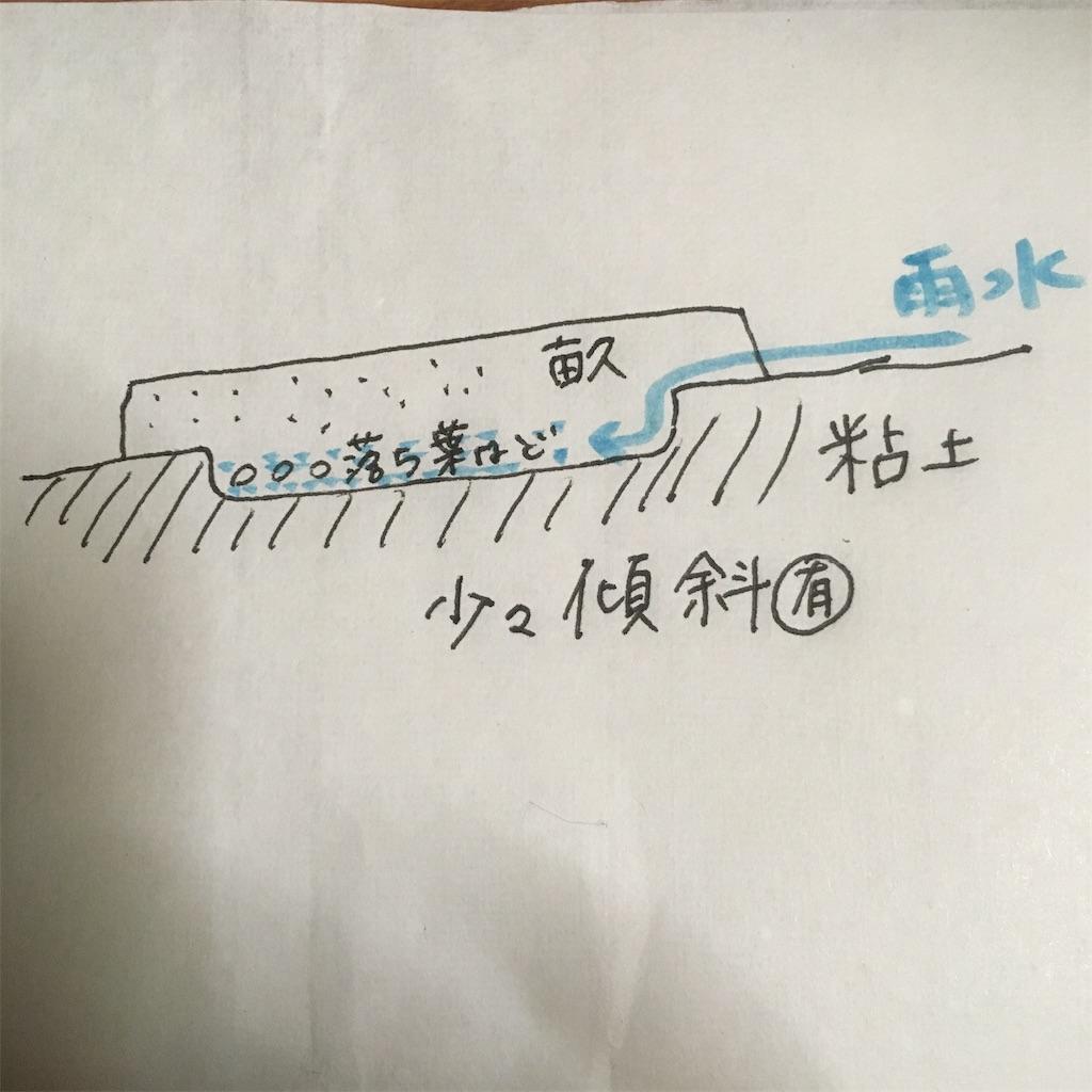 f:id:shima-shimachan:20200409204849j:image