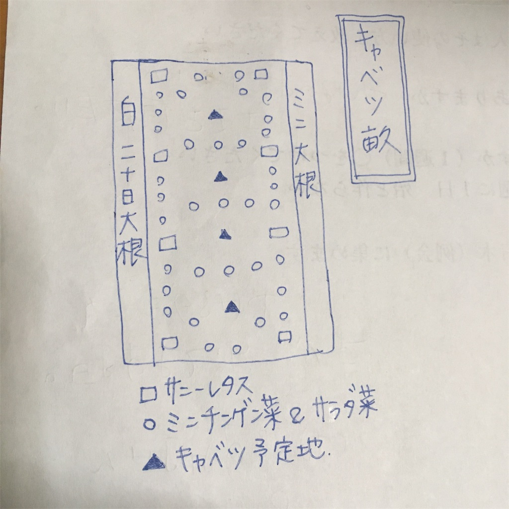 f:id:shima-shimachan:20200422221341j:image