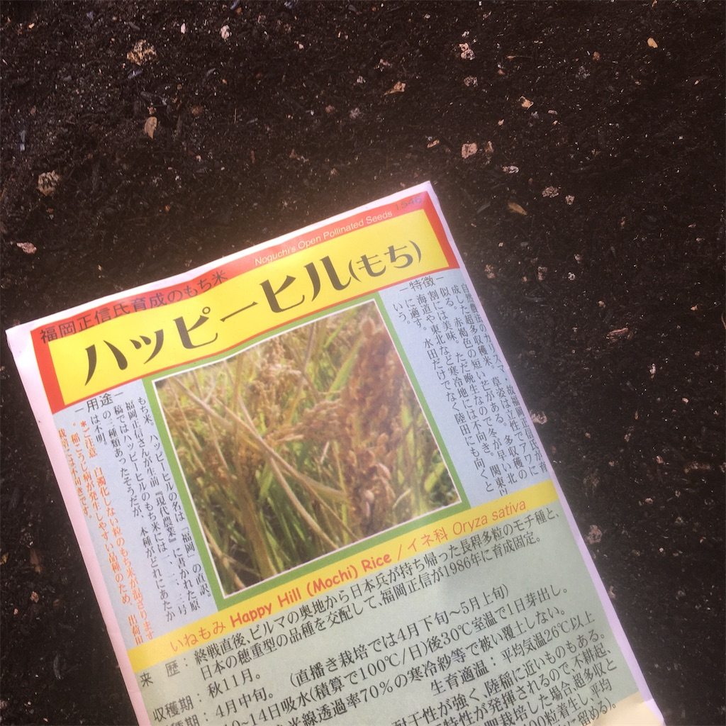 f:id:shima-shimachan:20210421145230j:image