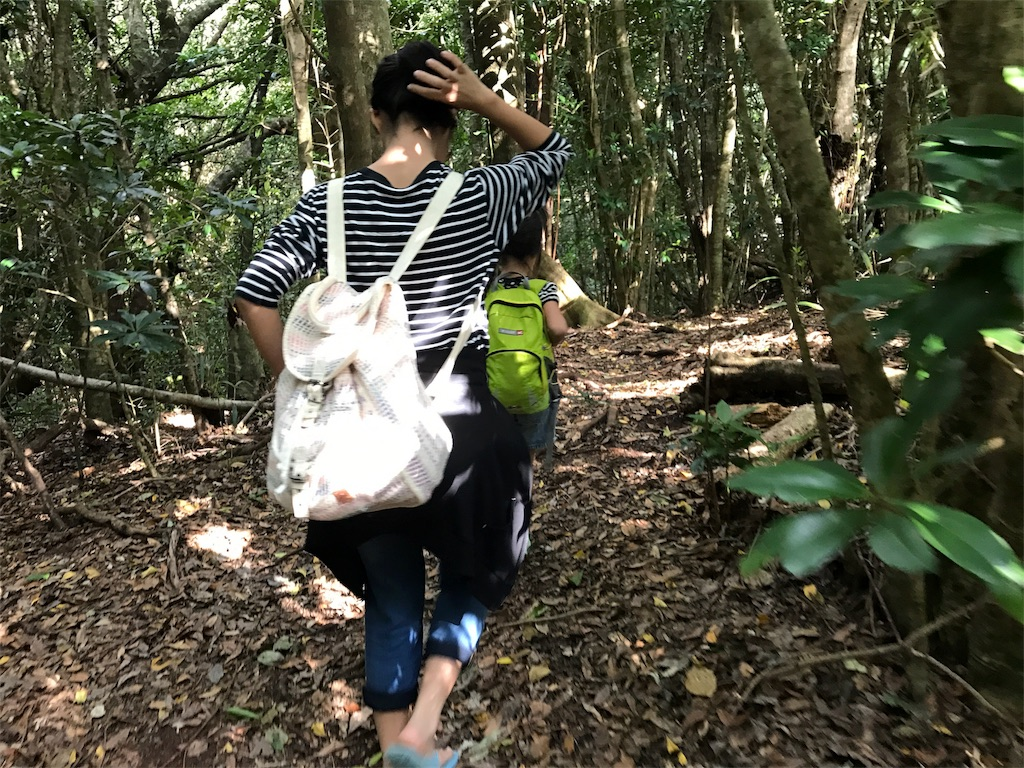 f:id:shima_asari309:20170117162734j:image