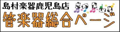 f:id:shima_c_kagoshima:20180103175751j:plain