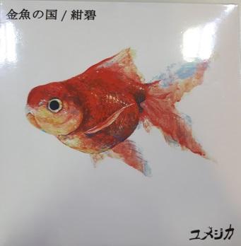f:id:shima_c_kagoshima:20180614154012j:plain