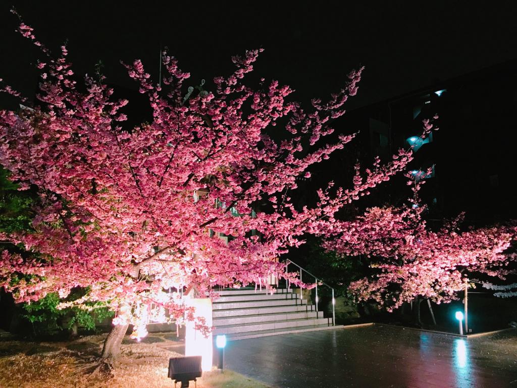 f:id:shima_c_kasai:20180318190015j:plain