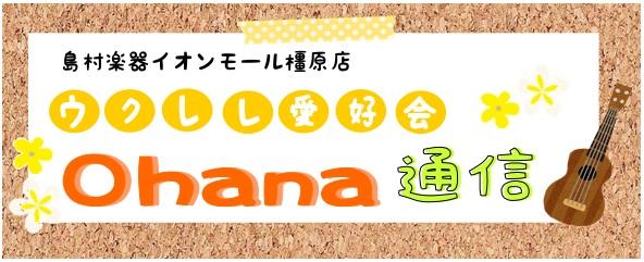 f:id:shima_c_kashihara:20180719173354j:plain
