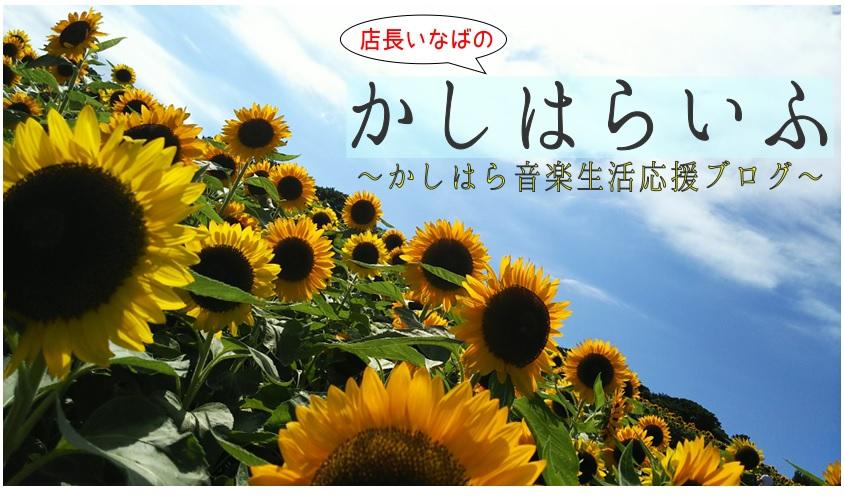 f:id:shima_c_kashihara:20180721210234j:plain