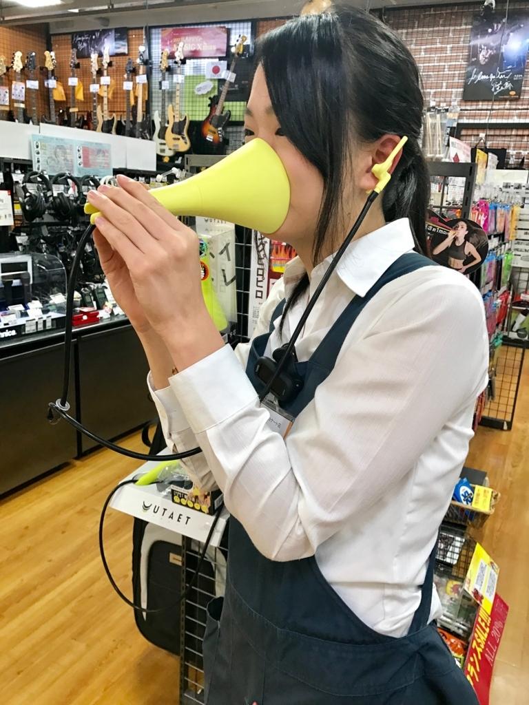 f:id:shima_c_kyoto:20171102115842j:plain