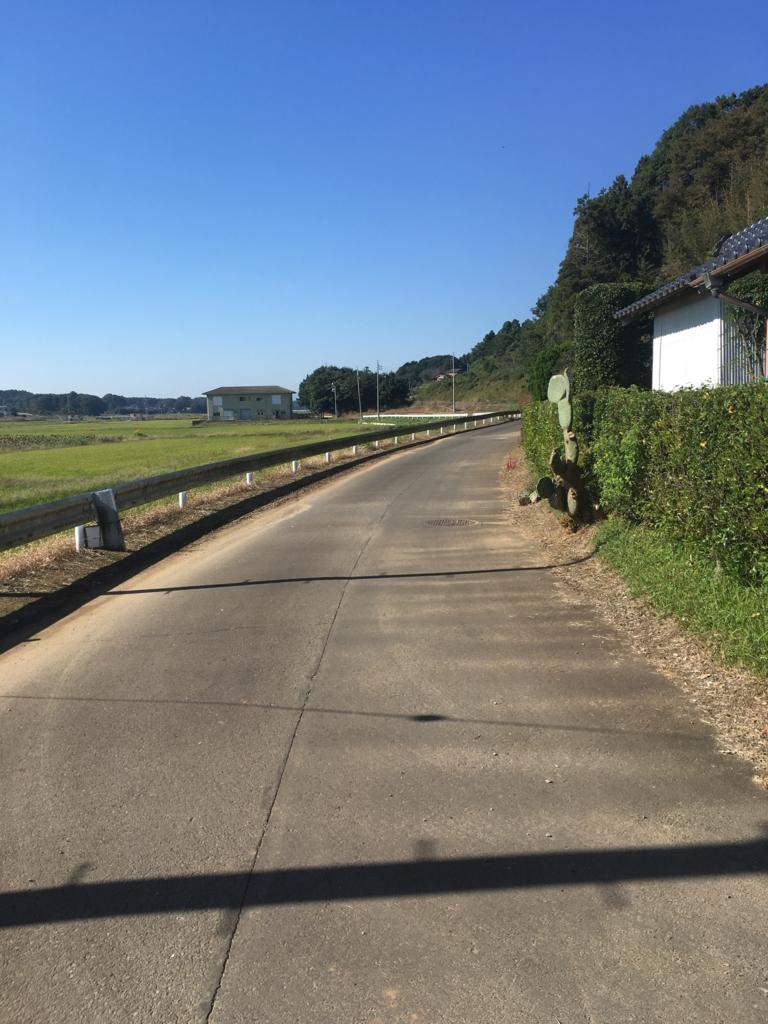 f:id:shima_c_kyotokatsuragawa:20170515140356j:plain