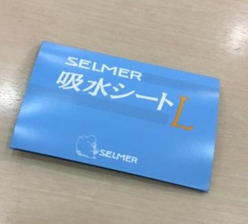 f:id:shima_c_nagoya-m:20170428180236j:plain