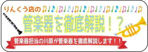 f:id:shima_c_rinkuu:20170626112156j:plain