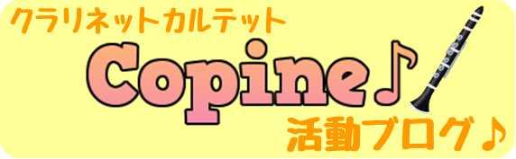 f:id:shima_c_rinkuu:20170629183434j:plain