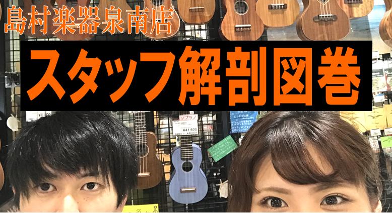 f:id:shima_c_sennan:20170617202332p:plain